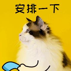 三大政策公布!莆田春季事业单位招聘条件放宽!
